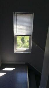 1 bedroom Apartment for rent in North Hamilton
