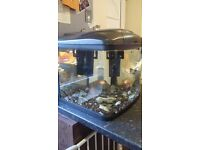 Fish tank 50 l