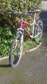Bike for spares or repair: 47 cm, 18.5 inch frame, 3x7 gears