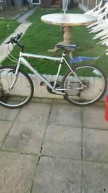 18 speed moutain bike