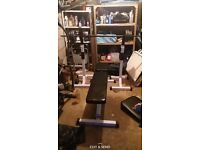 Bench and adjustable squat rack