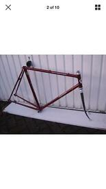 Rossin Record Professional Frame