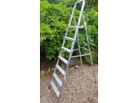Beldray 6 step ladder max weight 95 kgs