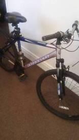 Adult size Barracuda Dakota bike plus extras