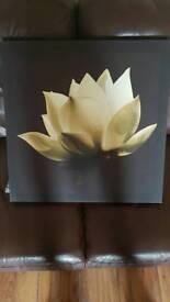 Next canvass