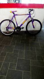 "Purple Jamboree Mountain Bike, 26"" Wheels, 21 Speed, 24"" Frame"