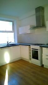 Brand new 1 and 2 bed flat available. Suitable for professionals. No agency fees.
