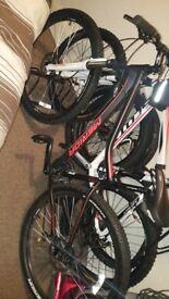 Lasses marida mountain bike