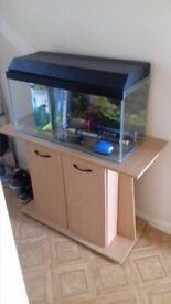 Aquarium & cabinet