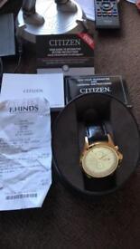 Gold plated citizen watch