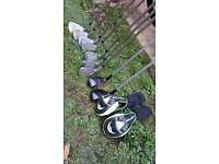 Progen Golf Clubs