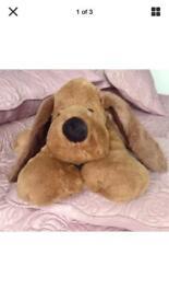 Long Eared Cuddly Dog