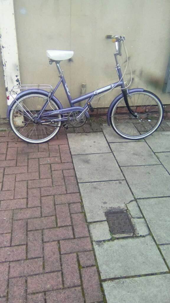 "Purple Raleigh Vintage 3 Speed Bike, 20"" Wheels, 18"" Frame"
