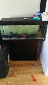 Fishtank with all equipment fist etc