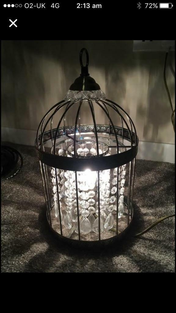 Birdcage lampin Ayr, South AyrshireGumtree - Birdcage lamp with bulb. Moving and unable to take this with me (