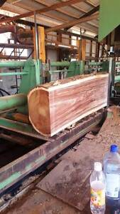 Timber Slabs Coomera Gold Coast North Preview