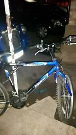 "26"" mountain bike mint condition"