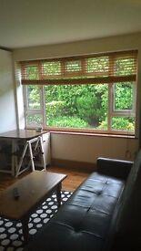 Luxury 1 bed garden flat for rent
