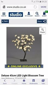Blossom tree light