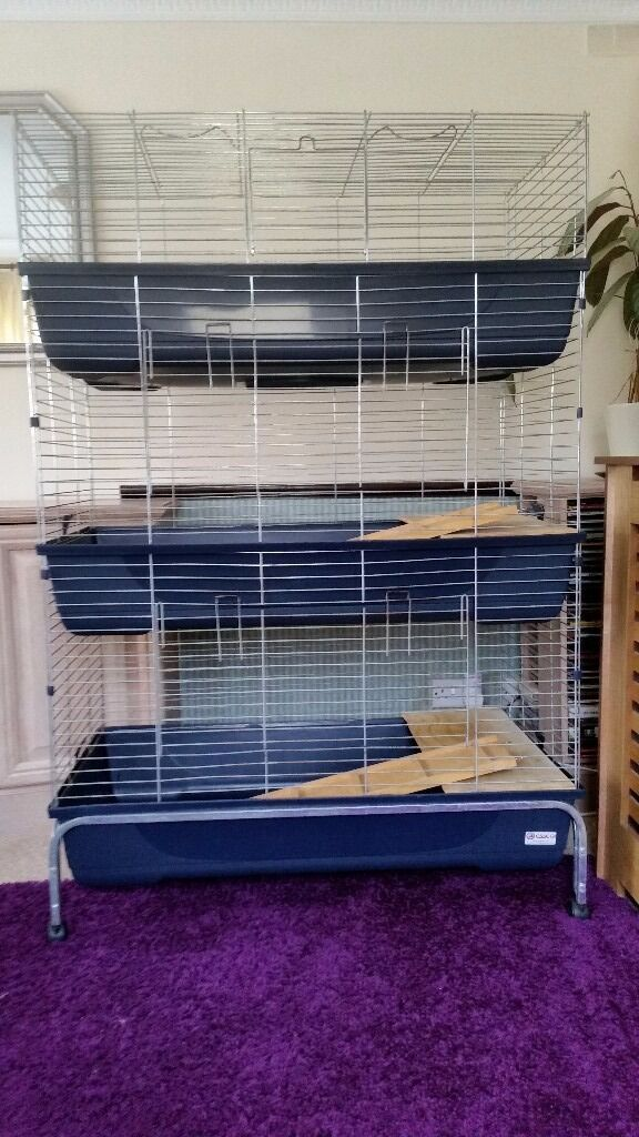 Super ♡ LARGE 3 TIER GUINEA PIG CAGE ♡ (ON WHEELS) | in Winchester  KO16