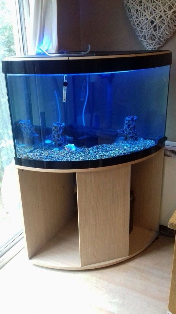 fluval venezia 190 corner aquarium set and cabinet full set up in st austell cornwall gumtree. Black Bedroom Furniture Sets. Home Design Ideas