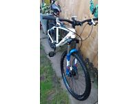 Mountain Bike carrera kraken