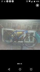 Matrix bike