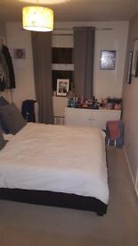 Lovely sized double room for rent in clean and tidy flat. All bills included. Available 6th November