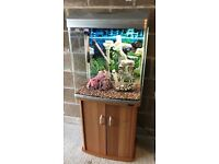 130l fish tank full set up with stand heater 2 x light filter gravel ornament all work and all clean