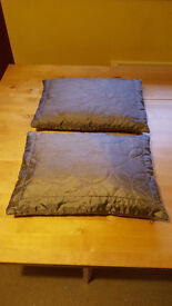 Pair of Mocha coloured cushions only £2!