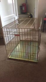 Medium dog crate. Gold
