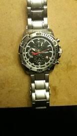 Citizen WR 100 watch