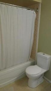 2 Bedroom Condo Centrally Located Kingston Kingston Area image 7