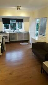 Lovely quiet double studio in honor oak, Brockley, SE London