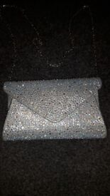 Beautiful Silver Prom Bag