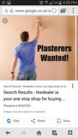 cheap plaster wanted