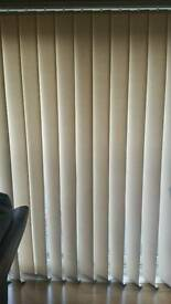 Cream vertical blinds for sale