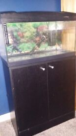 54ltr fish tank and cupboard