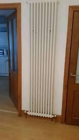 Acova 2 column vertical radiator