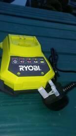 Ryobi one + mower and strimmer battery power