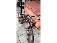 Custom downhill/mountain bike