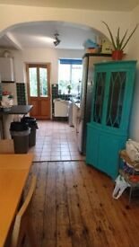 BIG DOUBLE room in friendly house share!!