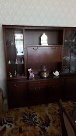Display cabinet in mahogany