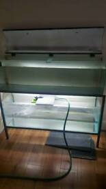 fish tank x2 4ft with stand (fish room)