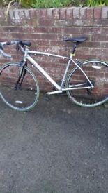 Never Used Road Bikes Owned by Local Bike Hire Company