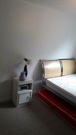 Double room for rent £330pm