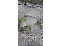 Various sized steping stones & slabs