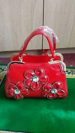 Handbag brand new