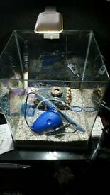 Square fish tank