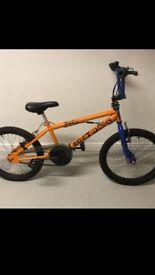 Boy Bmx bike